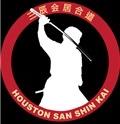 Houston San Shin Kai Iaido